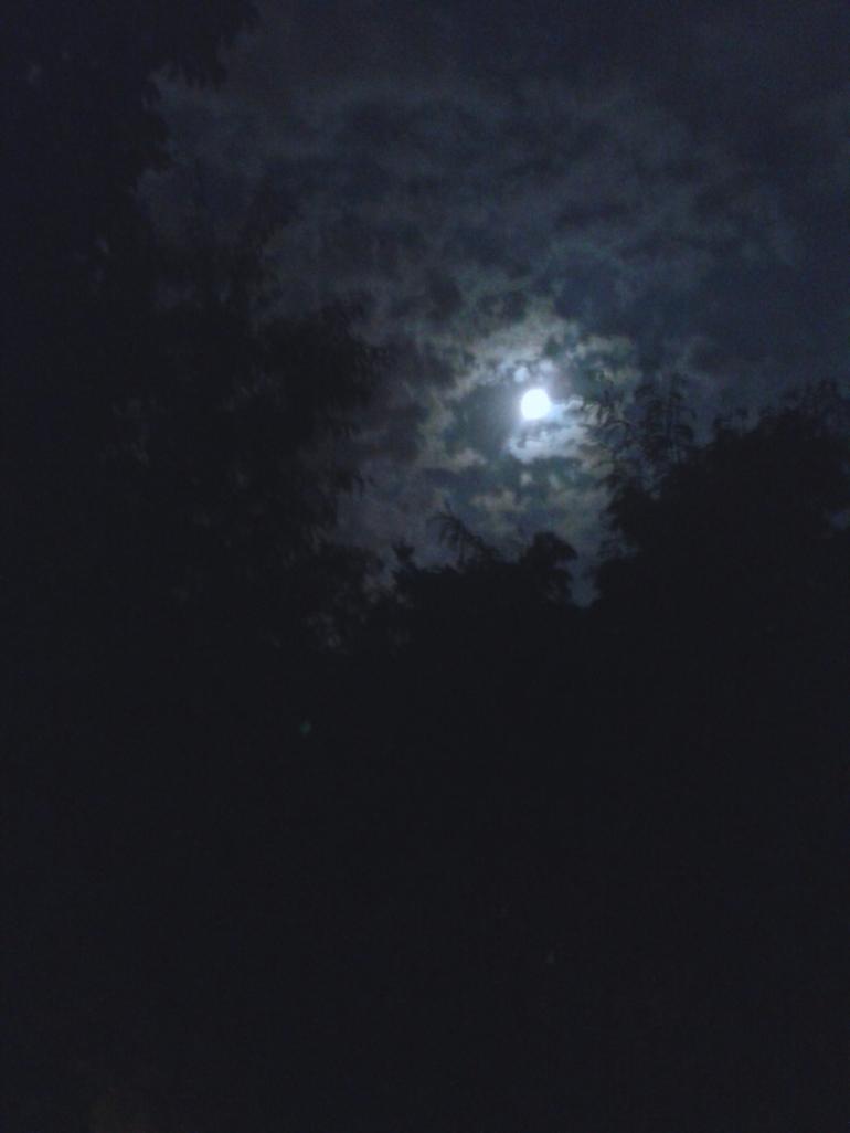 2013-08-20 01.05.11